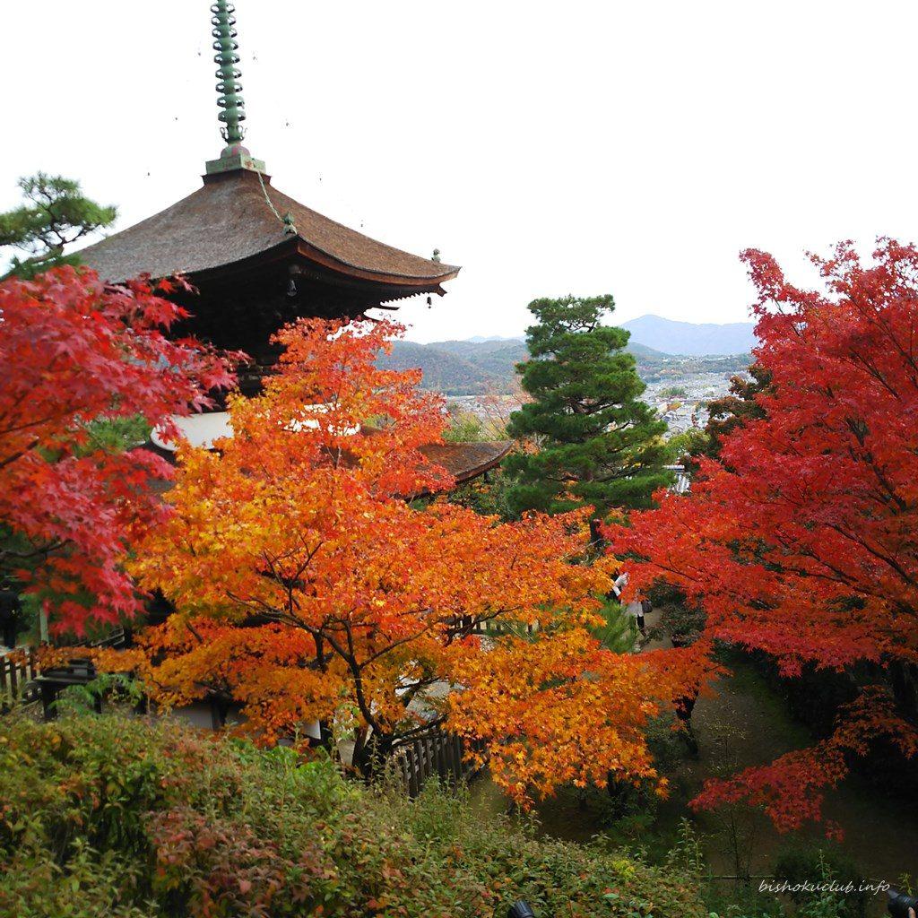 常寂光寺の多宝塔からの眺め