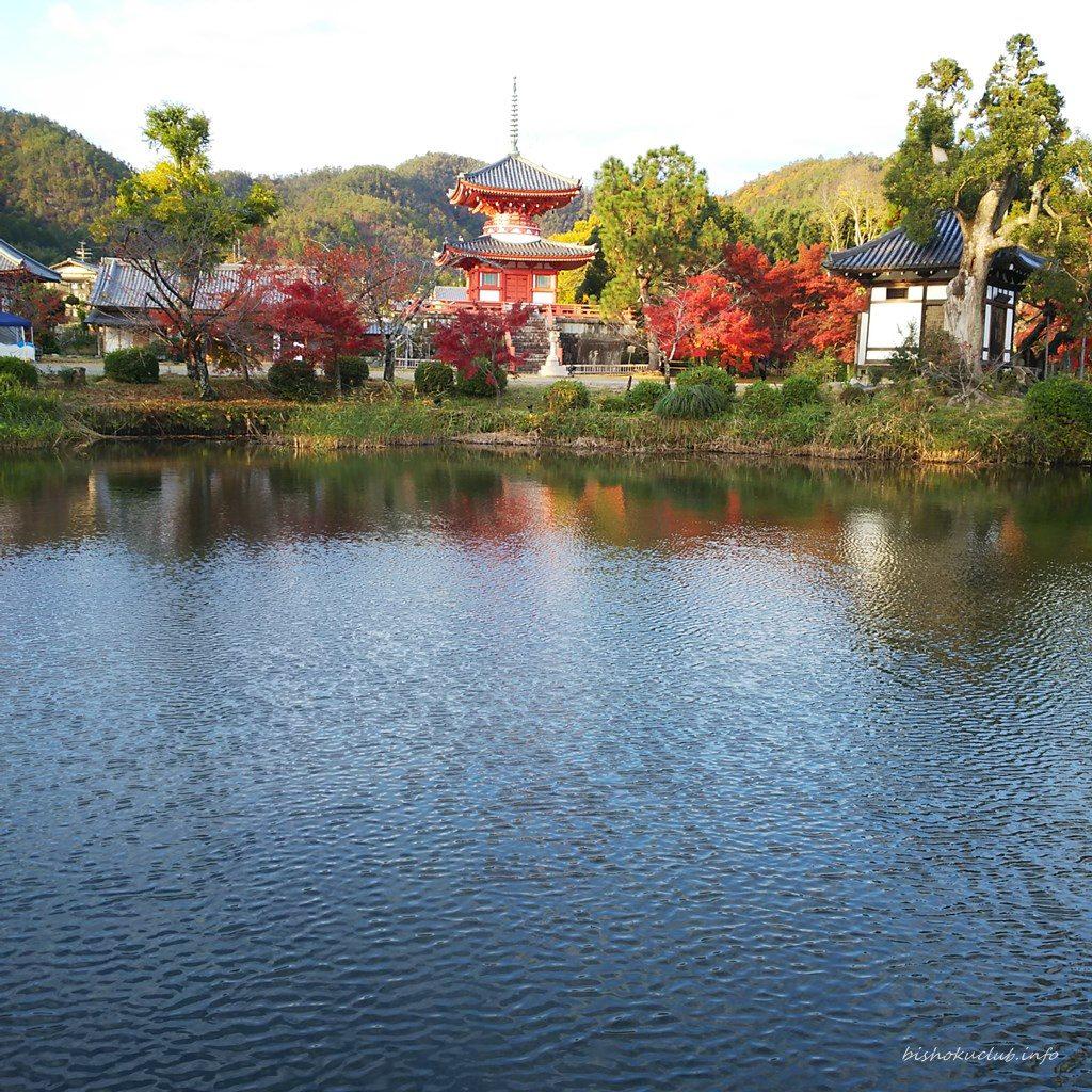 大覚寺の心経宝塔・放生池