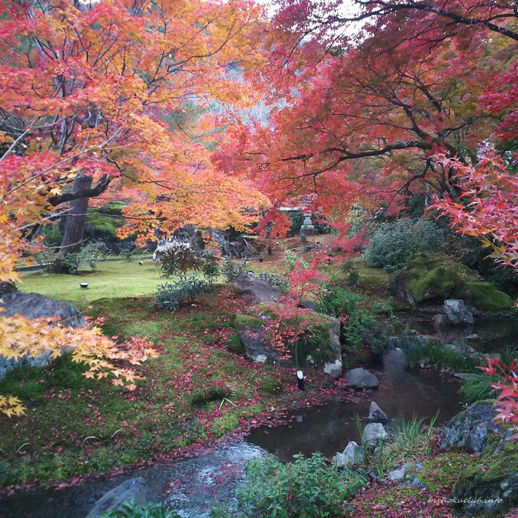 宝厳院の庭園