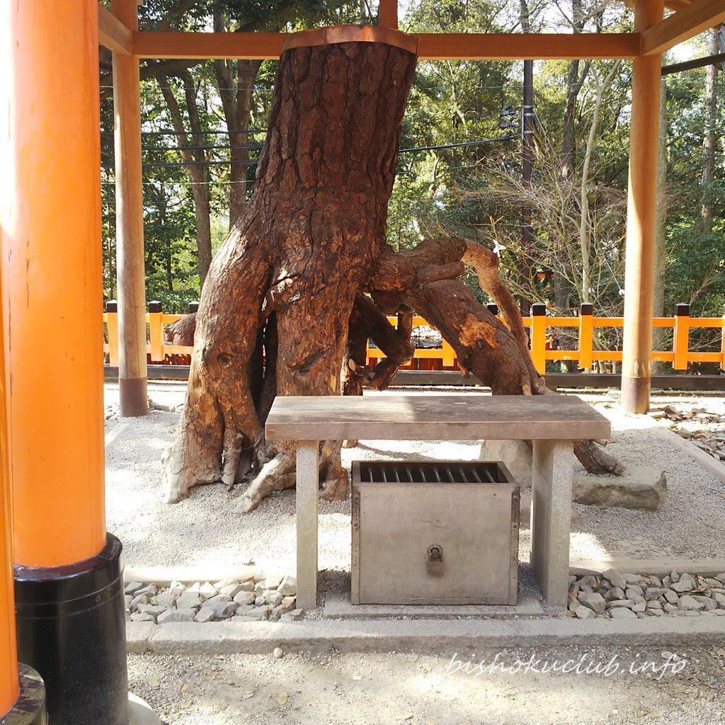 伏見稲荷大社の根上りの松